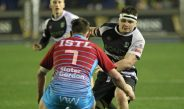 Bedwas battle hard but gain no reward